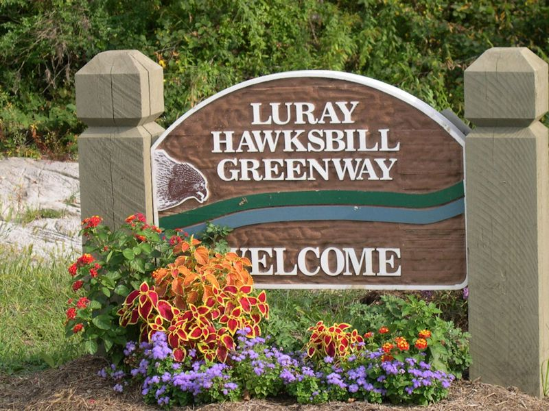 Luray-Hawksbill Greenway